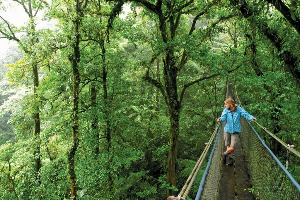 iS_10437221_Monteverde_CostaRica_CloudForest_HangingBridge