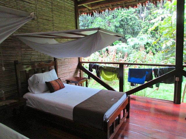 Our room in the Amazon