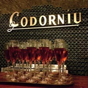 Must-do: a cava tasting at Codorníu (Photograph by Megan Heltzel)